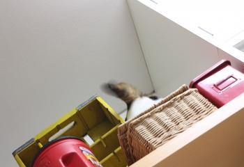 モネ冷蔵庫 3