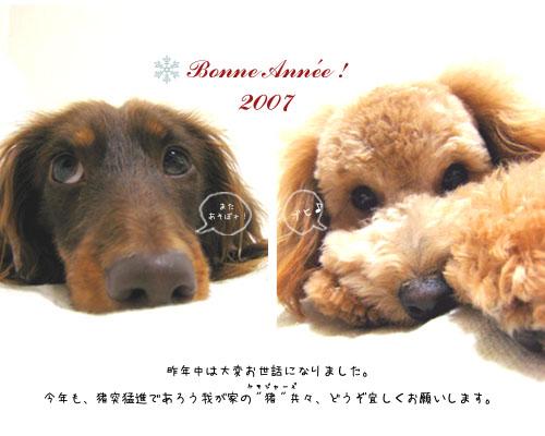 2007newyear.jpg