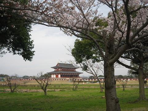 桜と第一次大極殿1