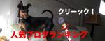 ラス田バナー1