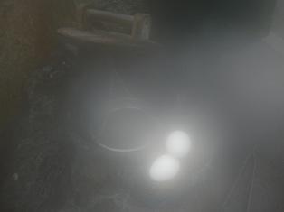 温泉卵(ブログ用)