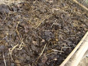 堆肥作り3