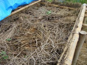 堆肥作り5
