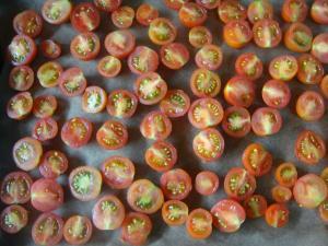 ドライトマト 4