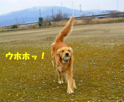 SANY0002_20090121222240.jpg
