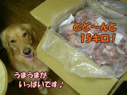 SANY0002_20090827075941.jpg