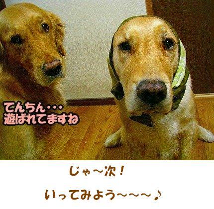 SANY0004_01.jpg