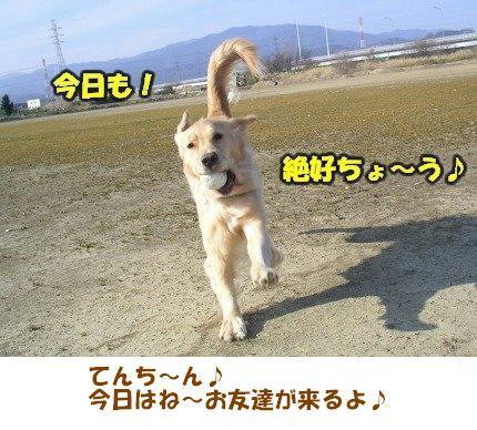 SANY0004_20090205005909.jpg