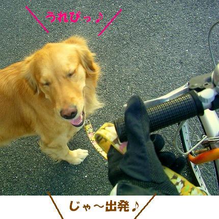 SANY0006_20090108173605.jpg