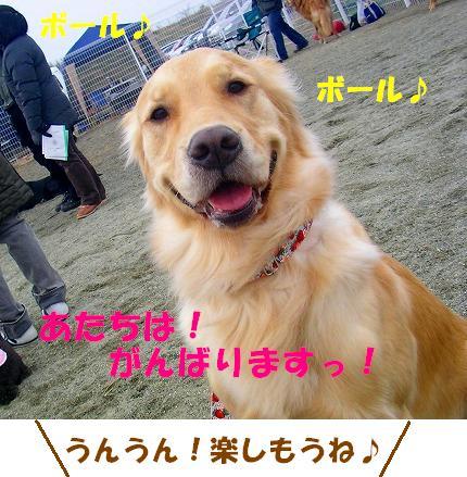 SANY0007_20090119072755.jpg