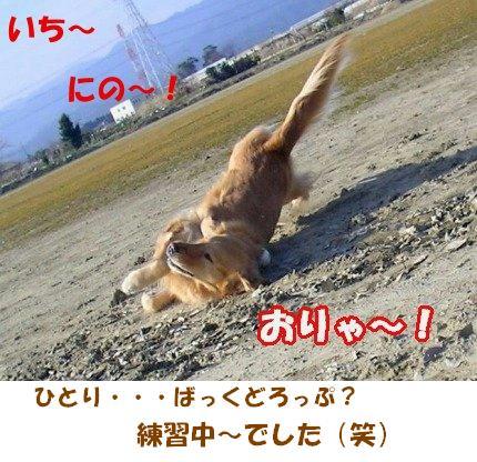 SANY0009_20090205005939.jpg