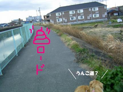SANY0010_20090127165104.jpg