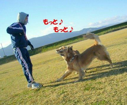 SANY0011_20090202024243.jpg