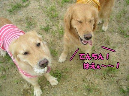 SANY0011_20090725102311.jpg