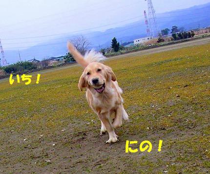 SANY0012_20090121222207.jpg