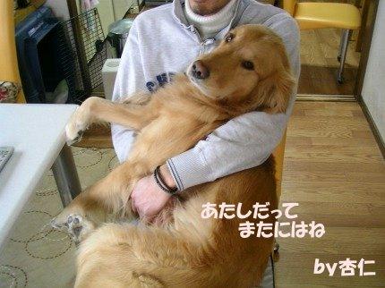 SANY0012_20090207235356.jpg