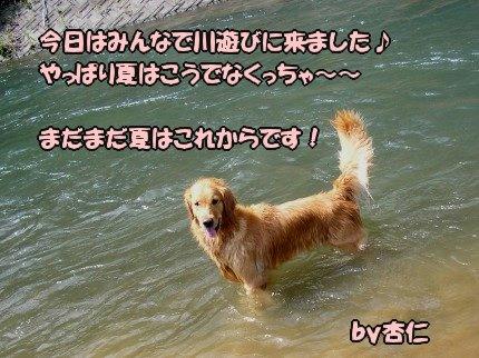 SANY0014_20090812212159.jpg