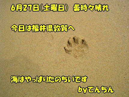 SANY0015_20090629094541.jpg