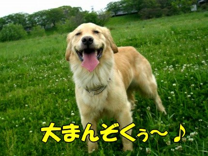 SANY0016_20090428050838.jpg