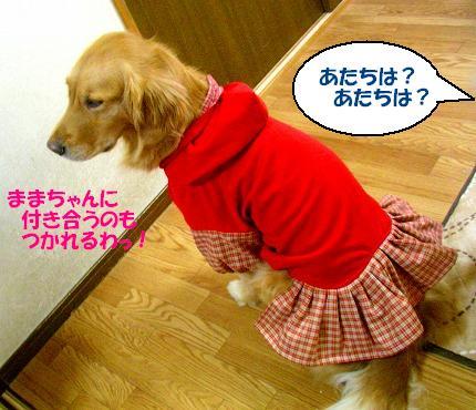 SANY0018_20081226114901.jpg