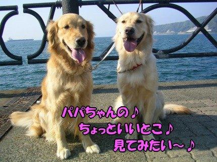 SANY0018_20090430005444.jpg