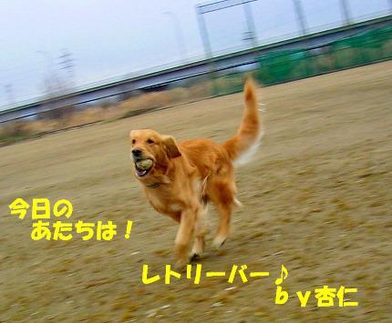 SANY0019_20090121222249.jpg