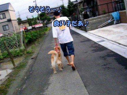 SANY0019_20090802215113.jpg