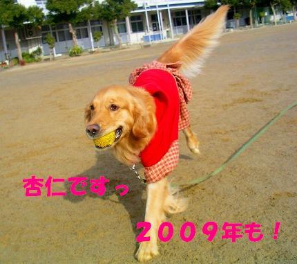 SANY0025_20090104173910.jpg