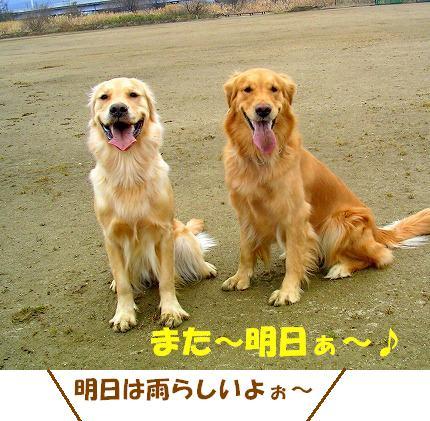 SANY0025_20090121222457.jpg