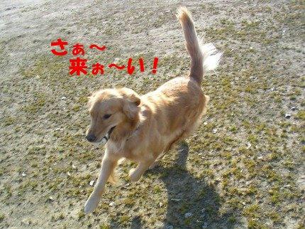 SANY0026_20090205010105.jpg