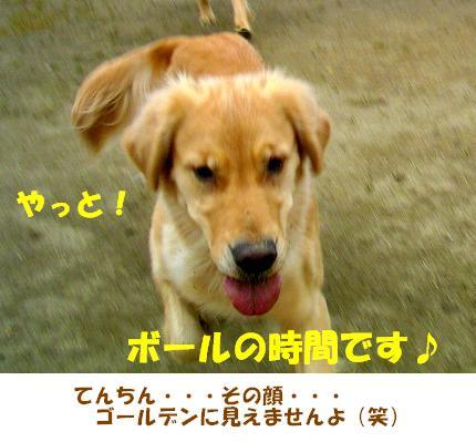 SANY0028_20090121222143.jpg