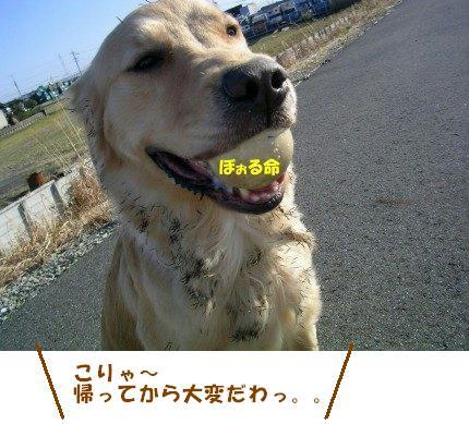 SANY0030_20090209001731.jpg