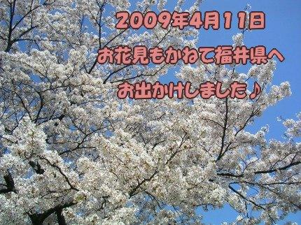 SANY0030_20090412232839.jpg