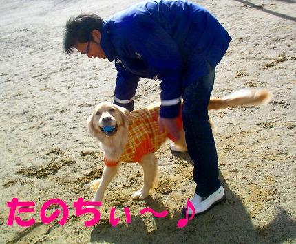 SANY0034_20090104174059.jpg