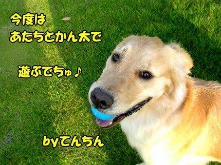 SANY0035_20090618213158.jpg