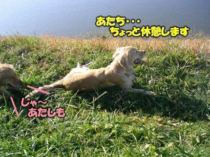 SANY0036_20090209001745.jpg