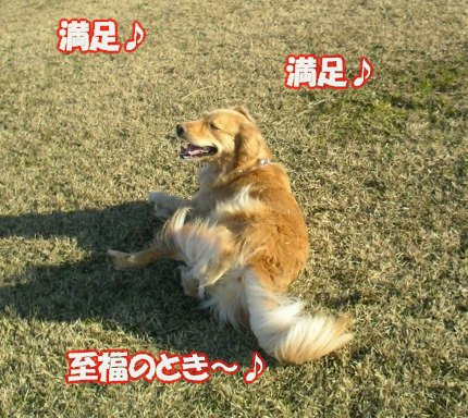 SANY0038_20090202025025.jpg