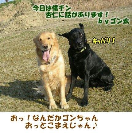SANY0044_20090205002227.jpg
