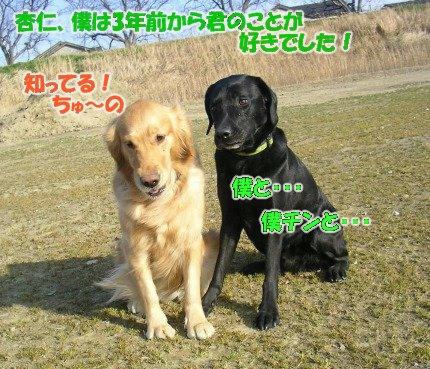 SANY0046_20090205002244.jpg