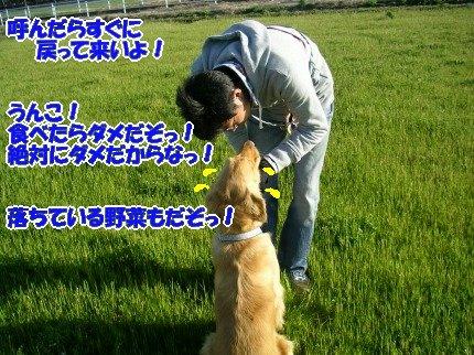 SANY0046_20090316001043.jpg
