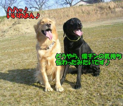 SANY0047_20090205005726.jpg