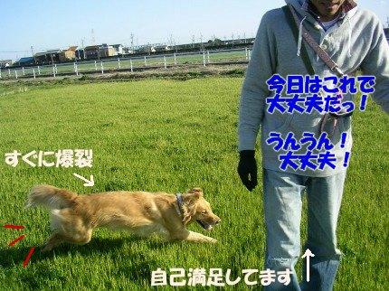 SANY0047_20090316001055.jpg