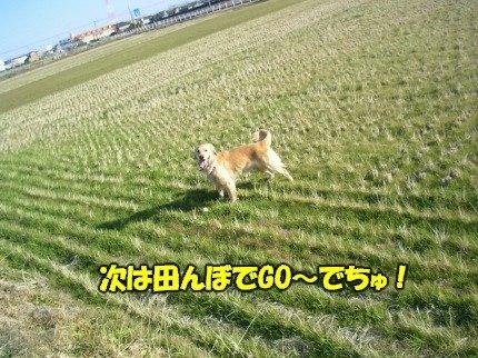 SANY0049_20090209002037.jpg