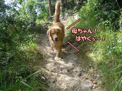 SANY0084_20090908094048.jpg