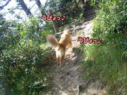 SANY0085_20090908094048.jpg