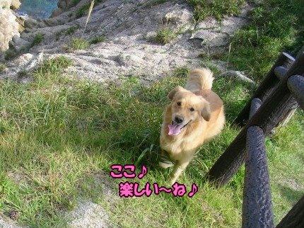 SANY0093_20090908094115.jpg