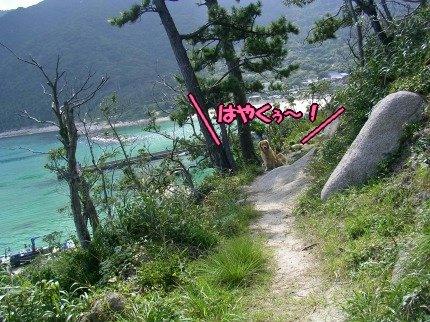 SANY0094_20090908094115.jpg