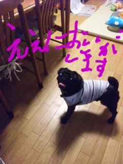 moblog_055cd06f.jpg