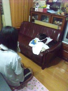moblog_05bf647b.jpg