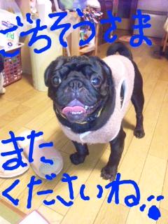 moblog_385a4a7c.jpg